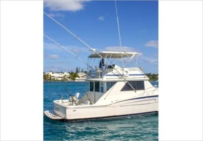 Charter Motorboat Chris Craft 480 Nassau