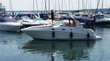 Barca a motore Sea Ray 315 Sundancer