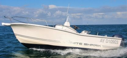 Charter Motorboat White Shark 205 Quiberon