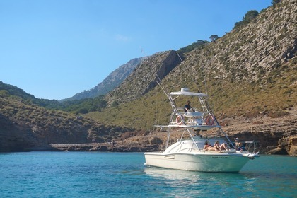 Rental Motorboat PURSUIT OFFSHORE 3000 Pollença