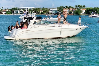 Charter Motor yacht Sea Ray Sundancer 41 Miami