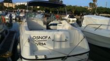 Motorboat Chaparral Signature 260 for hire